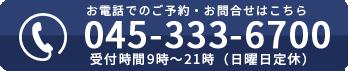 045-333-6700